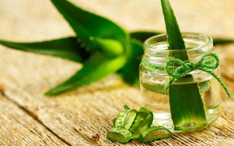 Aloe vera – Kosmetický zázrak